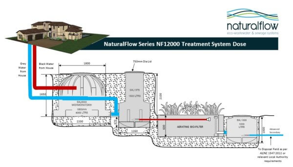 NF12000 treatment system dose